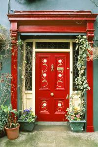 Red door with painted daisies, surrounded by flowers and vines. by Tom Haseltine