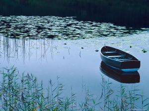 Rowboat on Lake Surrounded by Water Lilies, Lake District National Park, England by Tom Haseltine