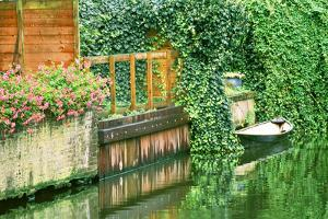 Small boat tied up in a canal next to a garden in Amsterdam. by Tom Haseltine