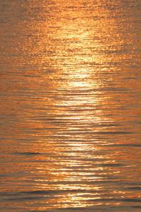 Sunset reflections on ripples of water. by Tom Haseltine
