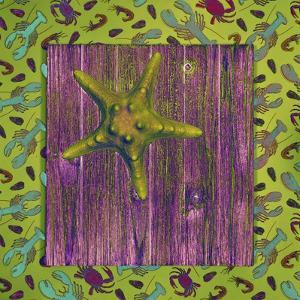 Green Starfish Deck by Tom Kelly