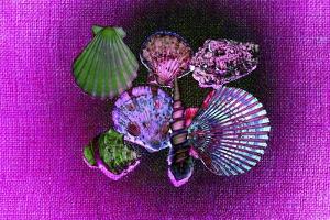 Purple Burlap by Tom Kelly