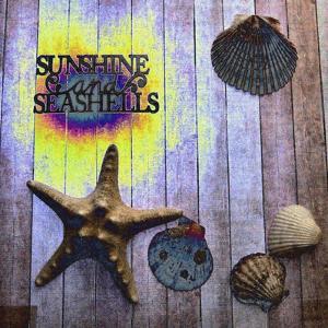 SunShine and SeaShells by Tom Kelly