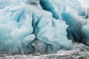Blue Icebergs in Antarctica by Tom Murphy