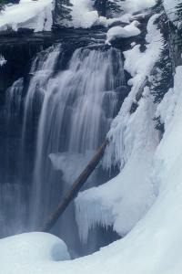 Iris Falls in Winter by Tom Murphy