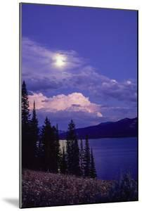 Landscape of Clouds over a Lake and Pine Trees by Tom Murphy