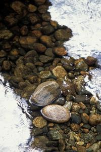 Pebbles and Rocks in a Stream with Reflections by Tom Murphy