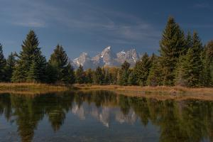 The Tetons Reflected in a Still Lake at Schwabachers Landing by Tom Murphy