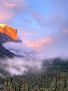 Alpenglow, Sunset Colors the Top of El Capitan, Yosemite, California, USA by Tom Norring