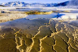 Chemical Sediments. Yellowstone National Park, Wyoming. by Tom Norring