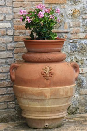 Flower Pots as Decoration. Tuscany, Italy by Tom Norring