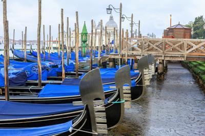 Gondola Lineup. Venice. Italy by Tom Norring