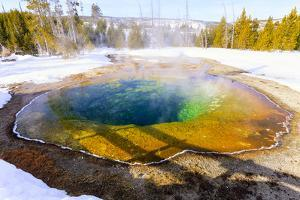Morning Glory in Snow. Yellowstone National Park, Wyoming. by Tom Norring