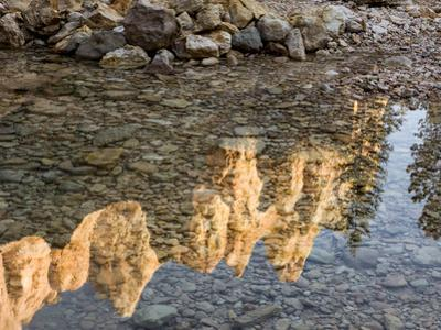 Peaks Reflecting in Small Pool at Mossy Cave at Bryce Canyon National Park, Utah, USA by Tom Norring