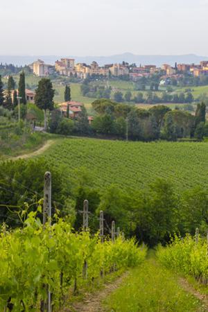 San Gimignano. Tuscany, Italy by Tom Norring