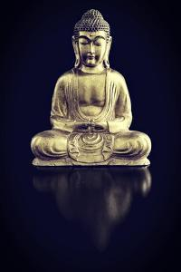 Gold Buddha on Black with Reflection by Tom Quartermaine