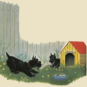 That Puppy!! by Tom Sinnickson