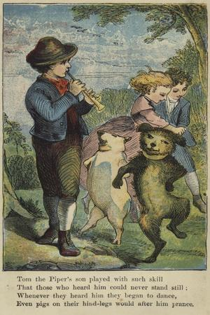 Tom the Piper's Son Played with Such Skill--Giclee Print