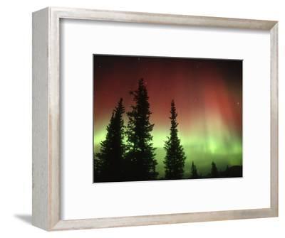 Aurora Borealis or Northern Lights, Alaska Range, Alaska, USA
