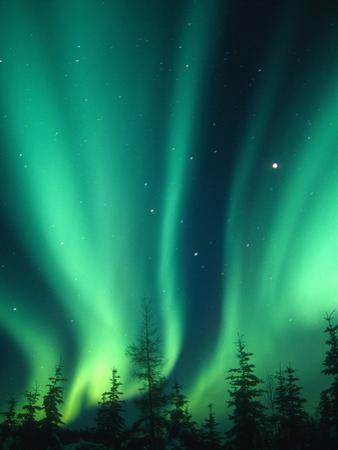 Aurora Borealis or Northern Lights, Alaska, USA by Tom Walker
