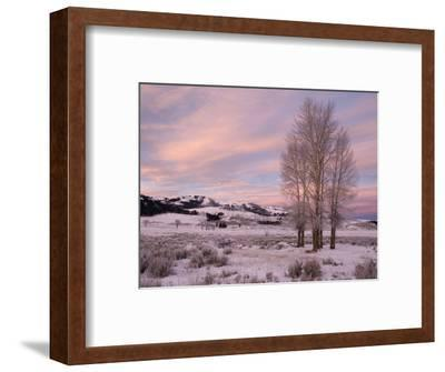 Lamar Valley in Winter, Yellowstone National Park, Wyoming, USA