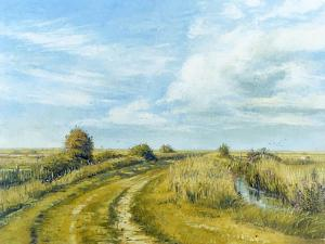 Burnham Norton Marshes, 2004 by Tom Young