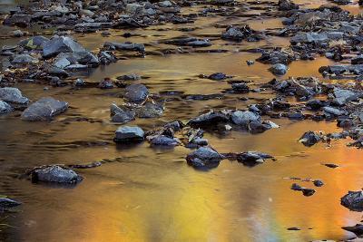 Tomahawk Creek, Leawood, Johnson County, Kansas, USA-Charles Gurche-Photographic Print