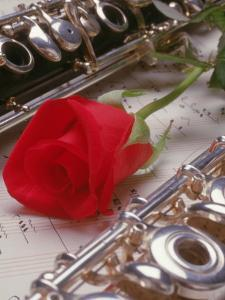 Clarinet and Flute on Sheet Music with Rose by Tomas del Amo
