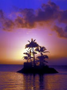 Small Island at Sunrise, South Pacific, HI by Tomas del Amo