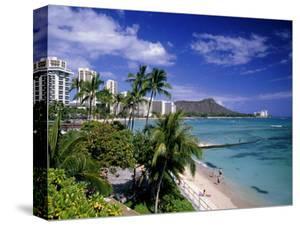 Waikiki Beach, HI by Tomas del Amo