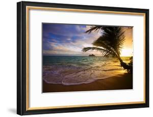 Sunrise at Lanikai Beach in Hawaii by tomasfoto