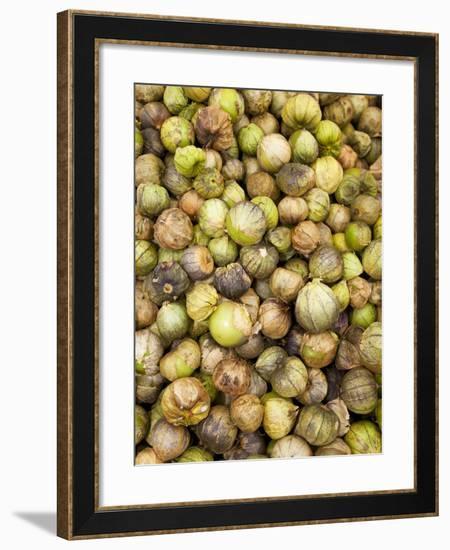 Tomatillos in Market, Guanajuato, Mexico-John & Lisa Merrill-Framed Photographic Print
