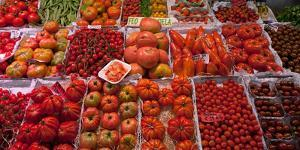 Tomatoes at a Market Stall, Santa Caterina Market, Barcelona, Catalonia, Spain