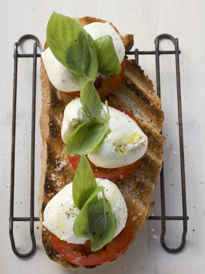 Tomatoes, Mozzarella and Basil on Toasted Bread--Photographic Print