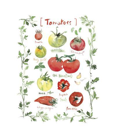 Tomatoes-Lucile Prache-Giclee Print