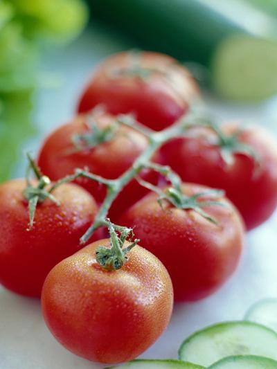 Tomatoes-David Munns-Photographic Print