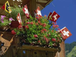 Display of Flags to Mark Swiss National Day, Lauterbrunnen, Bern, Swizerland, Europe by Tomlinson Ruth