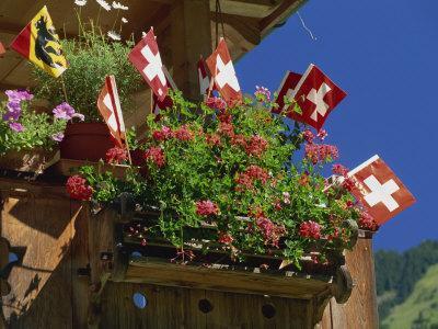 Display of Flags to Mark Swiss National Day, Lauterbrunnen, Bern, Swizerland, Europe