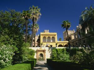 Gardens of the Reales Alcazares, Seville, Andalucia, Spain, Europe by Tomlinson Ruth