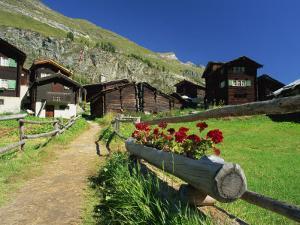 Red Geraniums Beside Path into Village, Zum See, Zermatt, Valais, Switzerland, Europe by Tomlinson Ruth