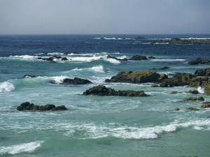Rocky Coastline as Seen from the 17 Mile Drive, on the Monterey Peninsula, California, USA by Tomlinson Ruth