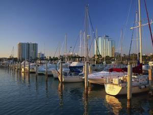 Sarasota Marina in the Evening, Florida, United States of America, North America by Tomlinson Ruth