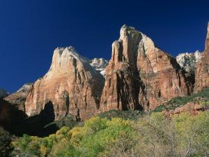 Trees Below Abraham and Isaac Peaks in the Court of the Patriarchs, Zion National Park, Utah, USA by Tomlinson Ruth