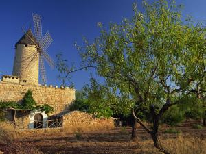 Typical Agricultural Windmill, Mallorca, Balearic Islands, Spain, Europe by Tomlinson Ruth