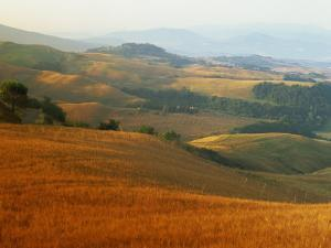 View across Agricultural Landscape at Sunrise, Volterra, Tuscany, Italy, Europe by Tomlinson Ruth