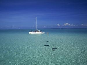 Yacht Moored in the North Sound, with Stringrays Visible Beneath the Water, Cayman Islands by Tomlinson Ruth