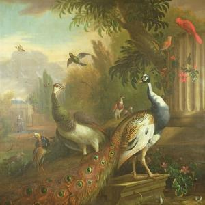 Peacock and Peahen with a Red Cardinal in a Classical Landscape by Tommaso Masaccio