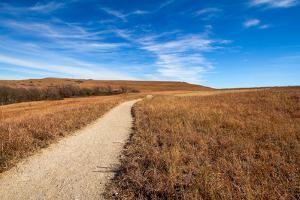 Pathway into the Prairie by tomofbluesprings