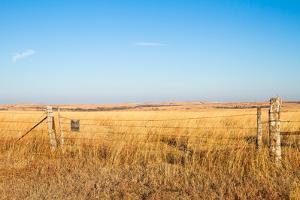 Prairie Blessing by tomofbluesprings
