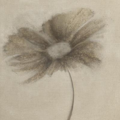 https://imgc.artprintimages.com/img/print/tonal-flowers-ii_u-l-f4zl9i0.jpg?p=0